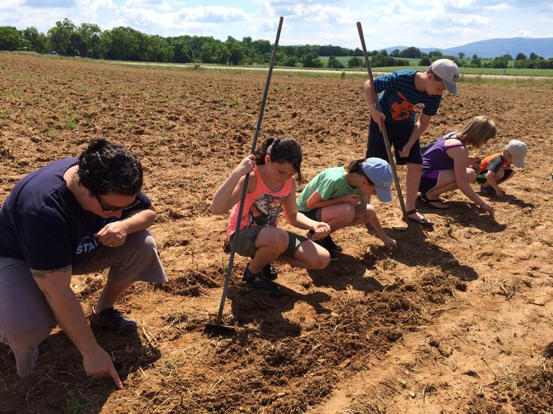Protesters plant a particular varietal of rare heirloom corn considered sacred to the Ponca Indian tribe.  They planted the seeds right along the proposed path of the pipeline.