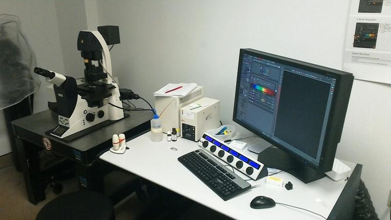 A lab office at UVa's Neuroscience Department