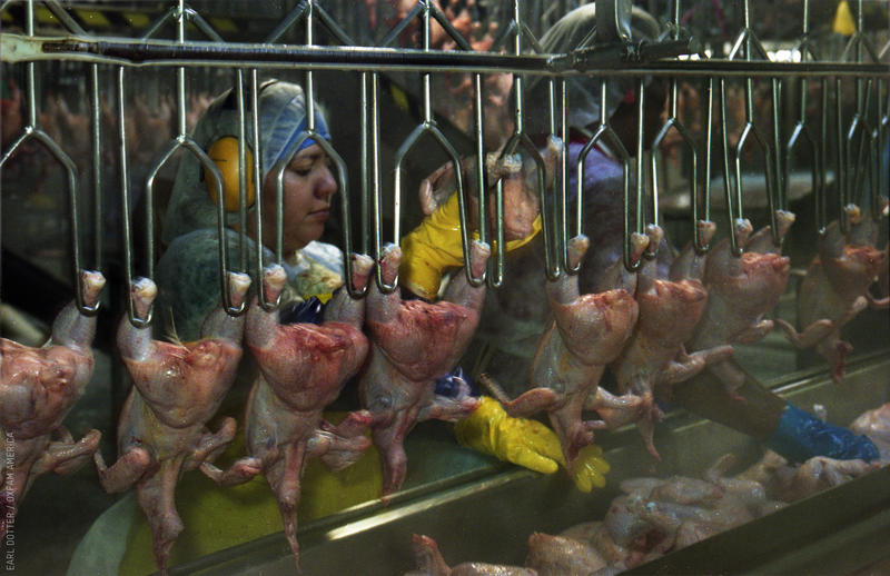 """Poultry workers earn low wages, face high risk of injury and illness, and often work in a climate of fear,"" says OxFam, a global anti-poverty organization."