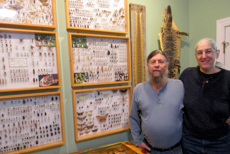 Lance and Jill Morrow, who study wildlife in their Shenandoah Valley Raptor Study Area, in their living room with insect and wildlife displays.