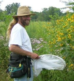 T'ai Roulston is a bee biologist at the University of Virginia.
