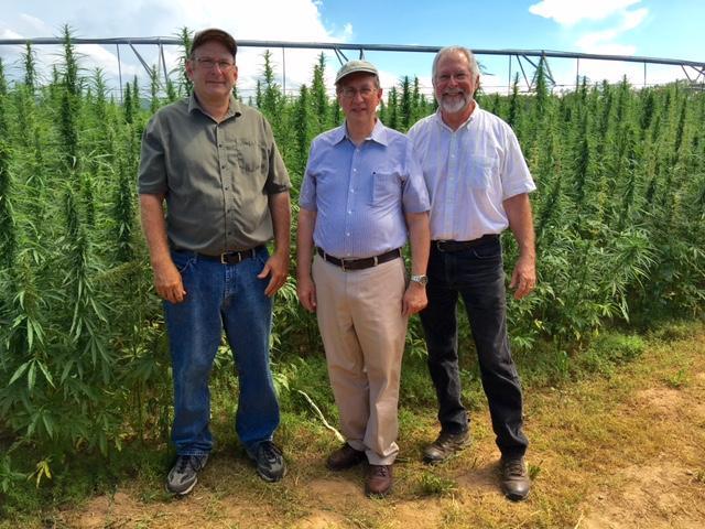 Farmer Glenn Rodes, Representative Bob Goodlatte, and JMU professor Mike Renfroe at the hemp field.