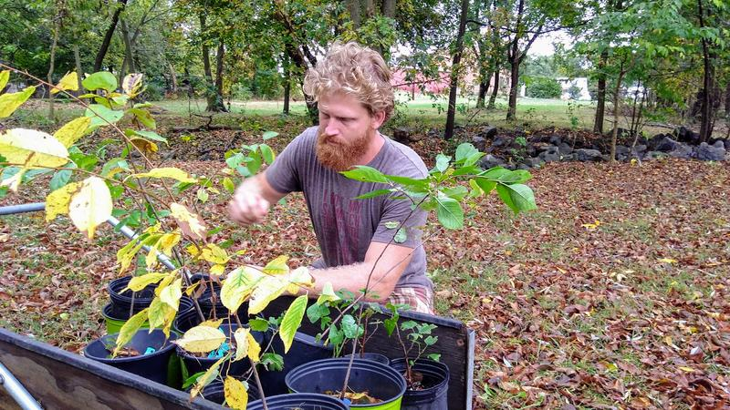 Jonathan McRay is a farmer and facilitator working in conjunction with Vine and Fig on the proposed Blacks Run Forest Farm and Folk School.