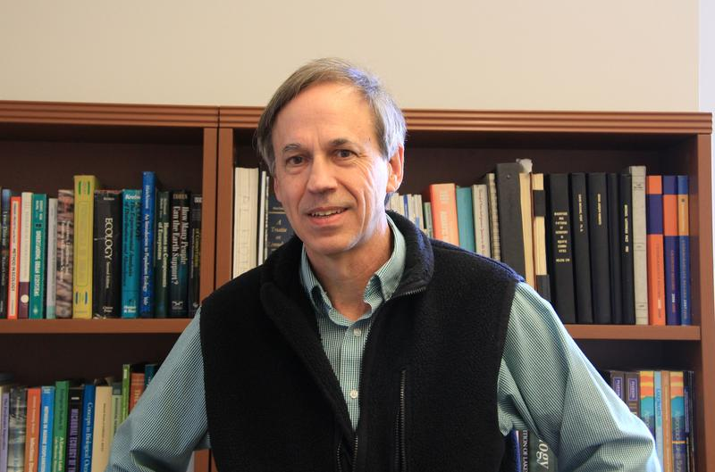 Michael Pace is an aquatic ecologist and a professor at the Department of Environmental Studies at UVa. He is one of the co-authors of a recent study on the effects of alkalinization of the country's rivers due to de-icing salt and fertilizer runoffs..