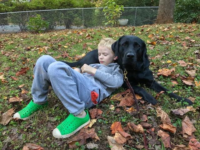 "Sam Pretus, 11, ""pillows"" on his service dog, a black lab named Forest. Sam's mom Jessica Neal says it greatly reduces Sam's anxiety."