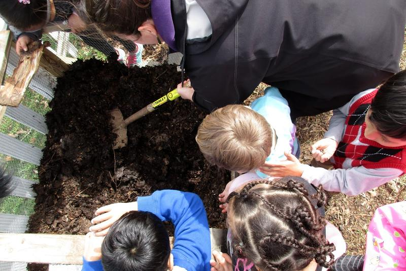 Students search for worms in the Waterman garden with help from garden coordinator Kathy Yoder.