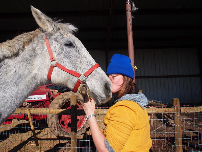 Sarah Murphy and her horse Rob Roy two days before completing the first leg of the ACP route back to Afton.