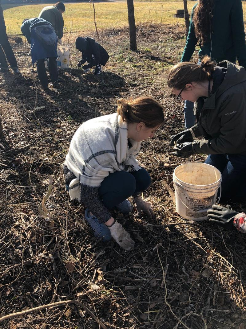 UVA student Caroline Alberti separates foam pollutants from stream runoff part of a field experience during the Emerging Creatives Summit.