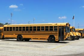School busses in Three Rivers