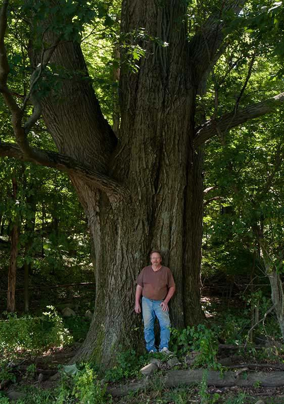 Blaine Mosher stands in front of an old red oak on his farm