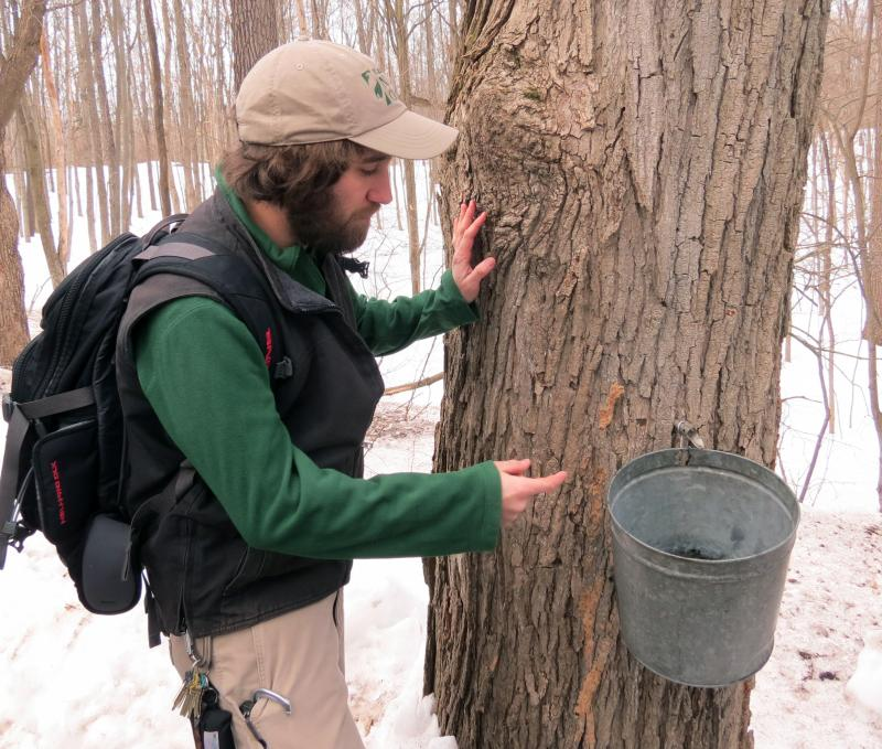 Kalamazoo Nature Center Exhibits Coordinator Dave Brown shows the tour group that there's only a small amount of sap in the bucket.