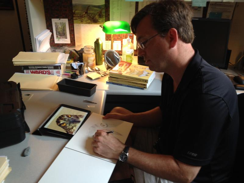Paul Krieger sketching a red-tailed hawk from his iPad in his office at Grand Rapids Community College