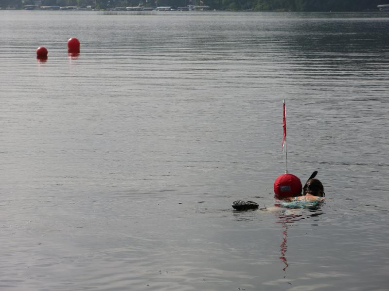 The study calls for snorkel surveys at several points around the lake.
