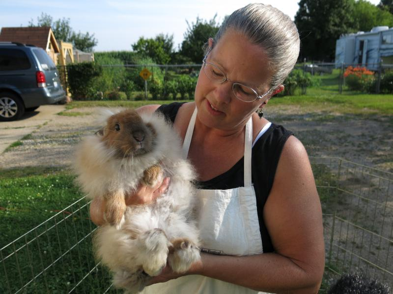 Lynda Jeltema holds one of her angora rabbits.