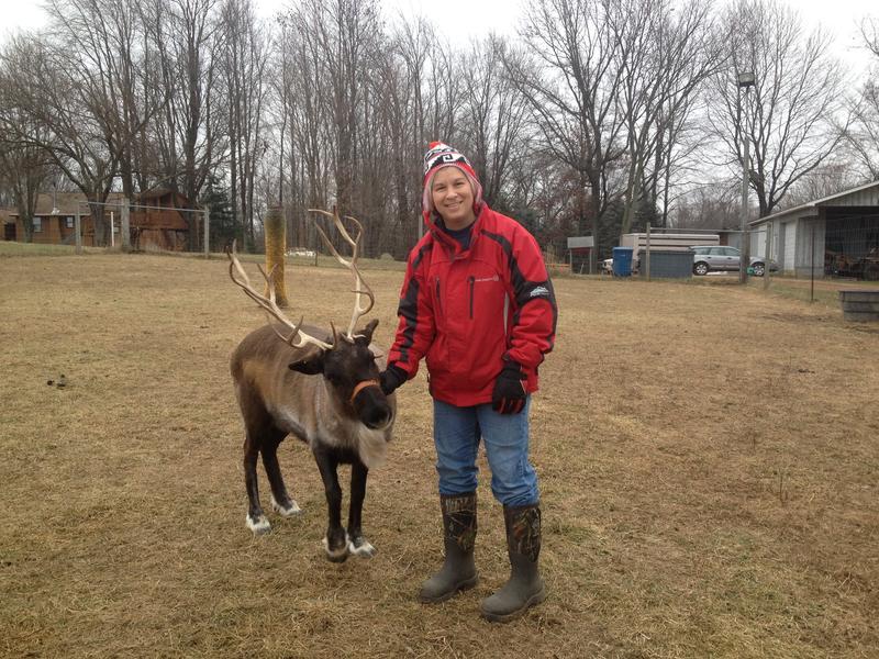 Carol Borton and one of her reindeer