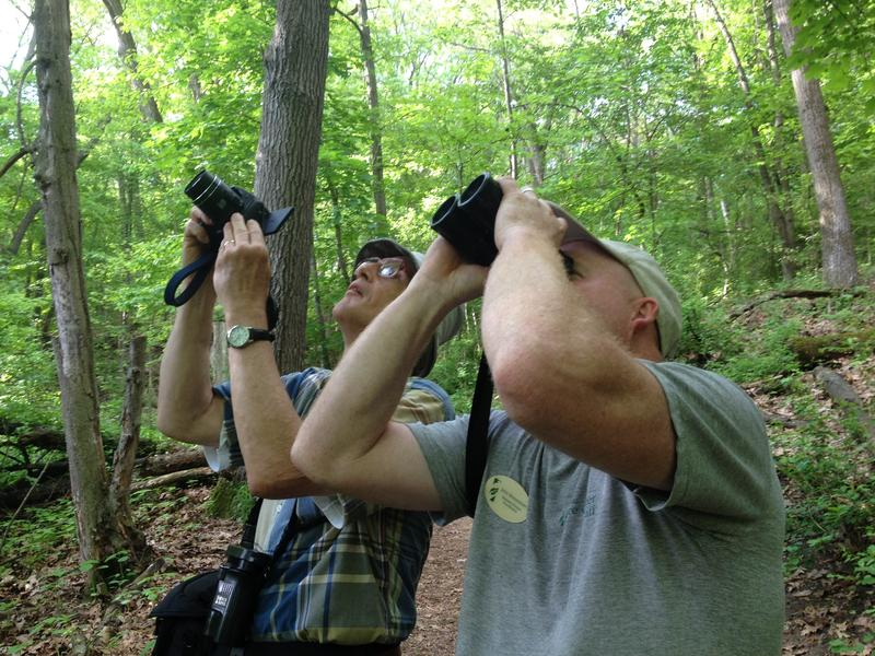 Kalamazoo bird enthusiast Russ Schipper (left) and John Brenneman (right) of the Kalamazoo Nature Center spot a familiar bird in Kleinstuck Preserve.