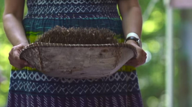 A still image from the Mnomen: Wild Rice trailer