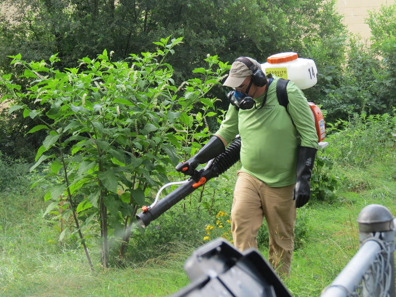 The Southwest Michigan Mosquito Squad sprays down the back yard of a homeowner on Kalamazoo's east side