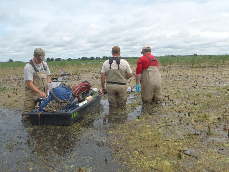 Employees with MDEQ's first wetland monitoring program floating their gear over a stream. File photo