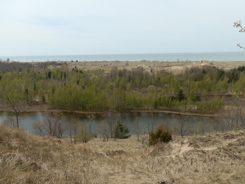 Overlooking the dunes in the Saugatuck area (File photo: 2010)