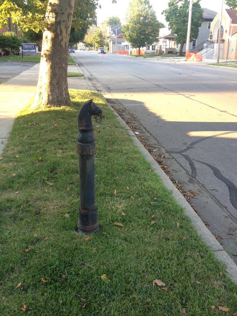 "This hitching post styled like a horse's head is in a curb lawn on Westnedge Avenue near Dutton Street. ""Why's That?"" has not confirmed that it is original to the spot, but plenty of houses in the neighborhood are old enough to have had hitching posts."