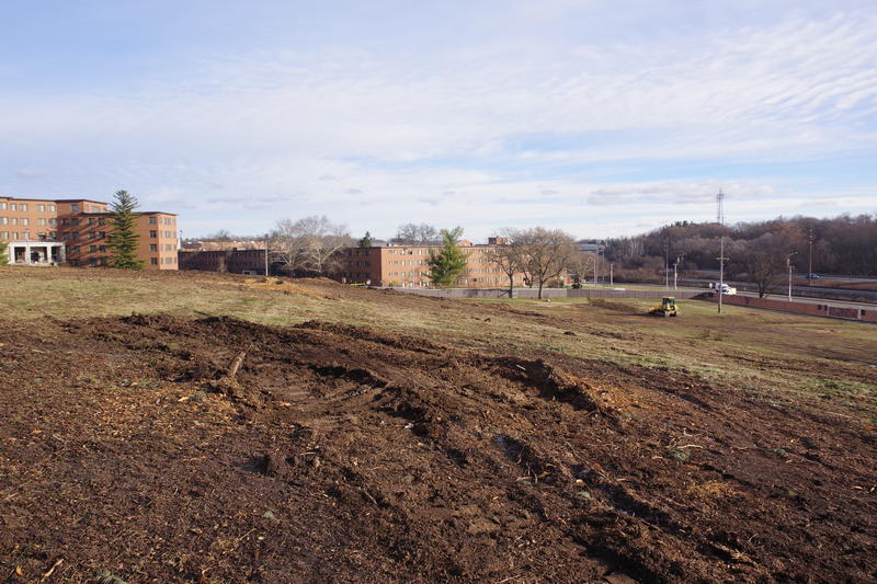 The South Campus site on Monday. The university cut down about 60 trees there over Thanksgiving break, according to the Facilities department (Photo by WMUK/Sehvilla Mann)