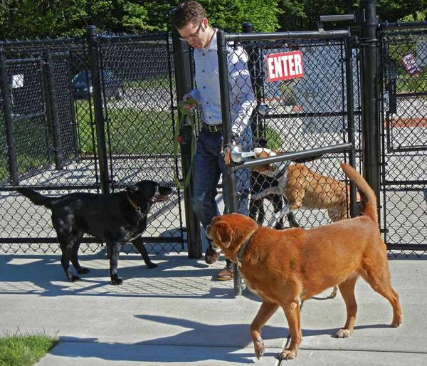 Matt Newton and pets at Fairmount Dog Park in Kalamazoo