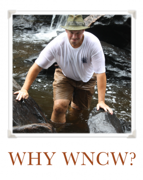 Why WNCW guy walking through creek