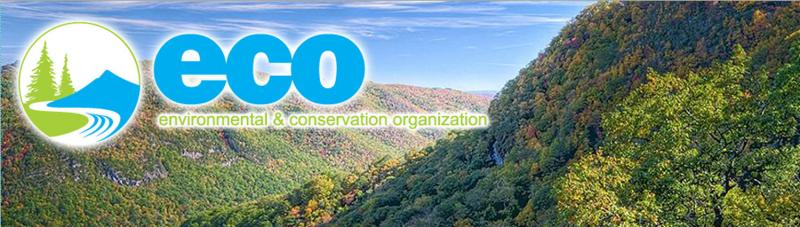 Environmental and conservation organization