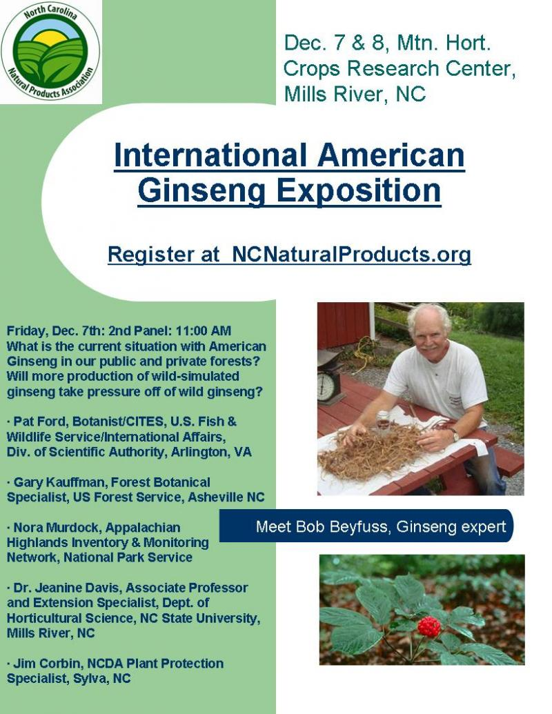 Ginseng expo flier