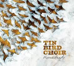 TIN BIRD CHOIR - Homesteady