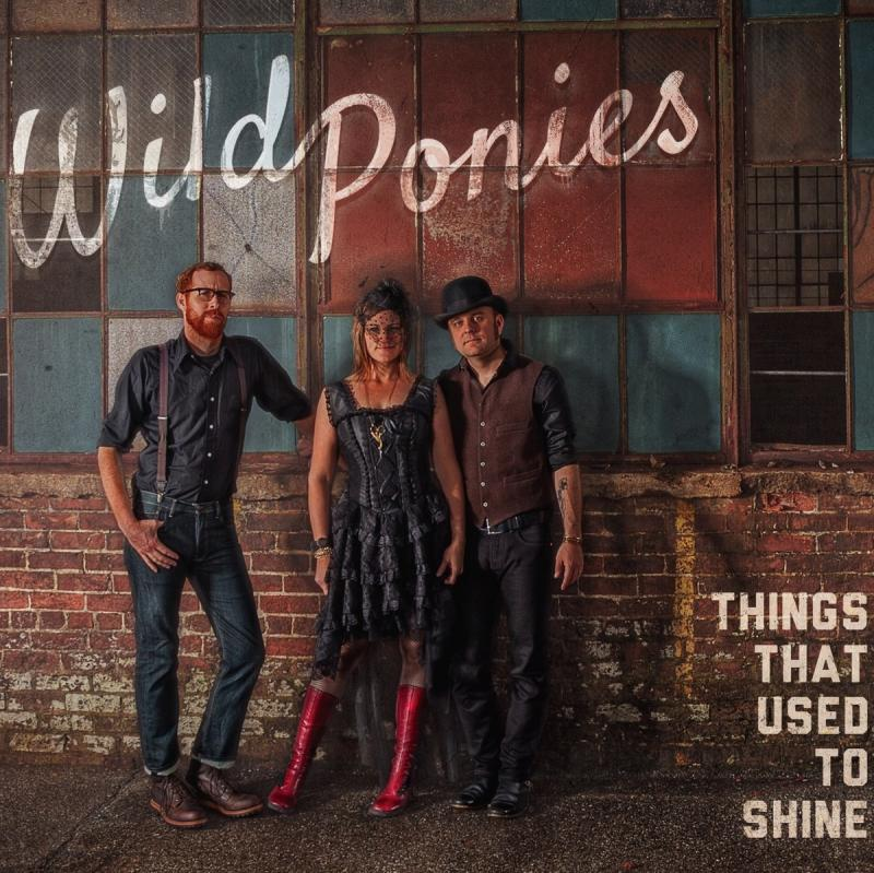 WILD PONIES (Doug & Telisha Williams) - Things That Used to Shine