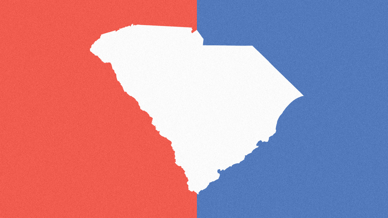 Graphic Image Of The State Of South Carolina