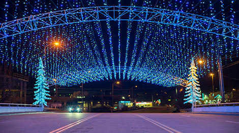 Beautiful shimmering blue lights and Christmas Trees