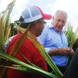Gov. Pat Quinn tours an Illinois corn field