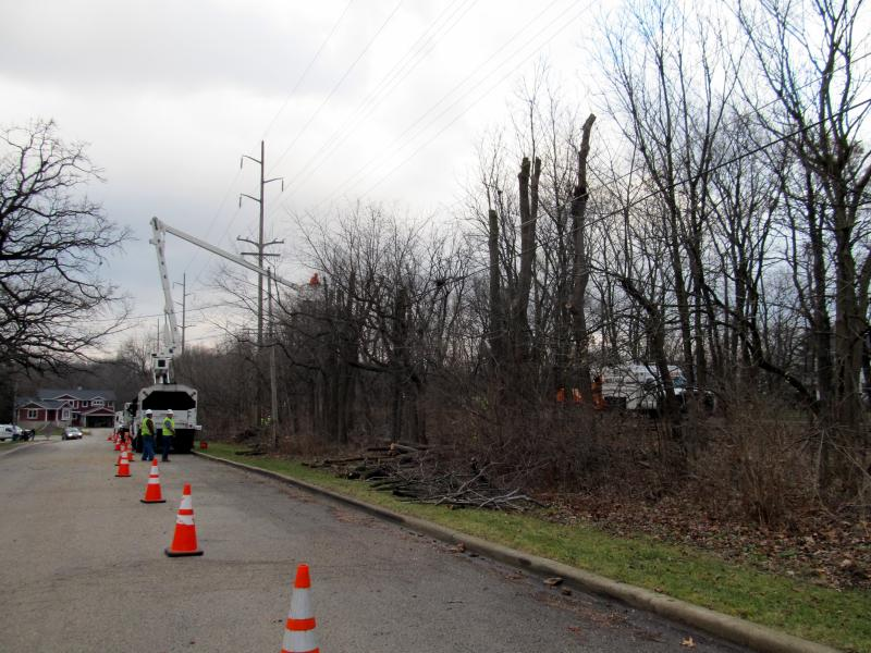 Workers remove all trees and brush from one side of DeKalb Nature Trail