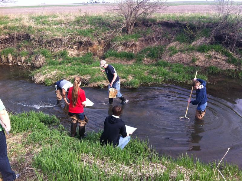 Students from Illinois Valley Community College conduct baseline testing at Sandy Creek near Wenona, Illinois
