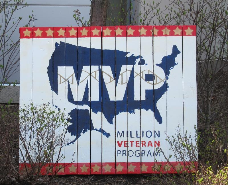 The Million Veterans Program is a genetic research project that hopes to benefit veterans healthcare by gathering and evaluating voluntary blood samples and health information from a million veterans.