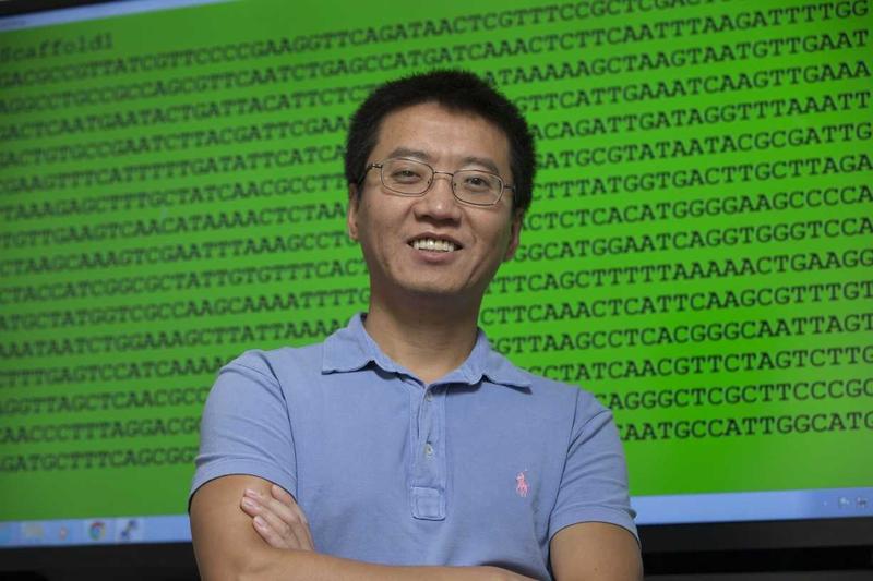 NIU biology professor Yanbin Yin