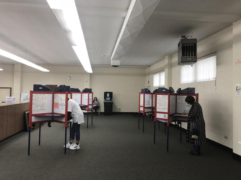 Voters at the Rockford Board of Elections at 301 S. 6th Street.