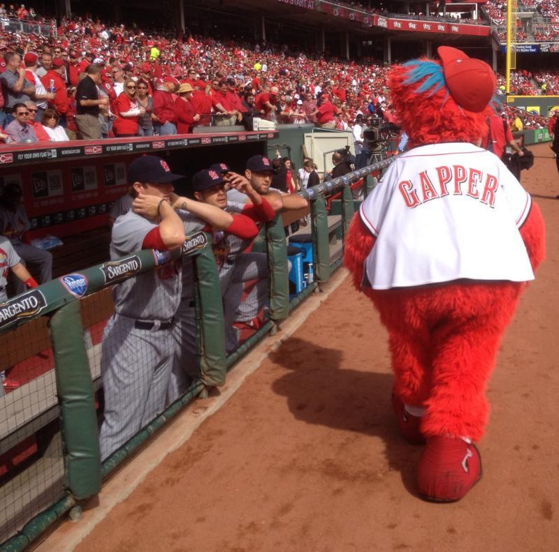 Reds mascot Gapper strolling past St. Louis Cardinals dugout