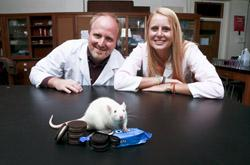 "Joseph Schroeder, associate professor of psychology at Connecticut College and director of the behavioral neuroscience program, and Lauren Cameron '14 found that eating Oreos activated more neurons in the brain's ""pleasure center"" than exposure to drugs of abuse."