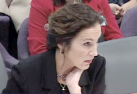 Deputy Insurance Commissioner Anne Melissa Dowling gives evidence to lawmakers