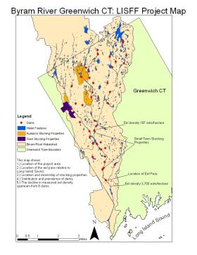 A map highlighting the dozens of dams on Greenwich's Byram River. Dams can hinder a juvenile eel's ability to safely travel upstream.