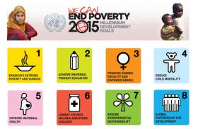 2015 Millennium Development Goals