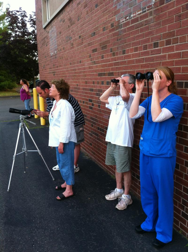 Birdwatchers in Hamden, Connecticut.