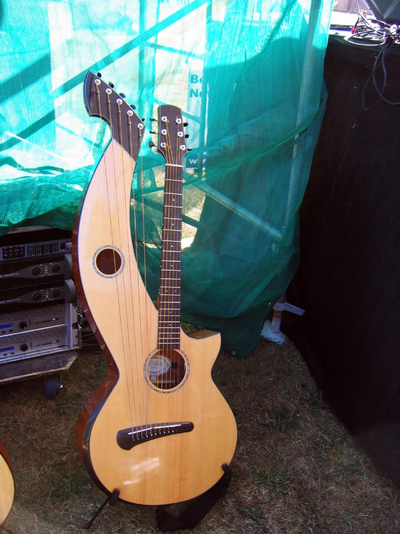 The harp guitar is a hybrid of the acoustic guitar and the harp.