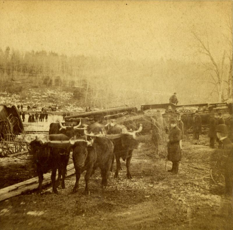 Salvage equipment in 1878 ranged from steam derricks to oxen, as in this photograph of the wreck scene. Detail of a stereograph by Daniel S. Camp of Hartford.