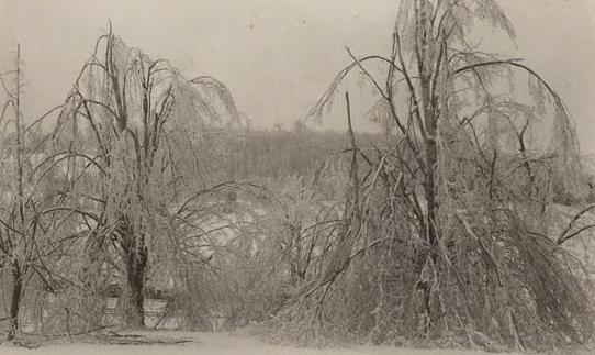 Maples, Litchfield Road, Norfolk, Connecticut. Photograph by Marie Kendall, 1898.