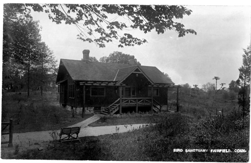 Bird Sanctuary.  Postcard, ca. 1914. View of the main building at the Bird Sanctuary in Fairfield, Connecticut, established by Mabel Osgood Wright.